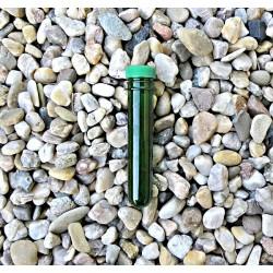 PET keška mikro zelená s...